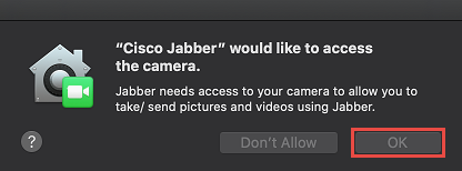Allow Camera Access